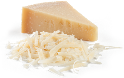 Parmigiano Reggiano Cheese block