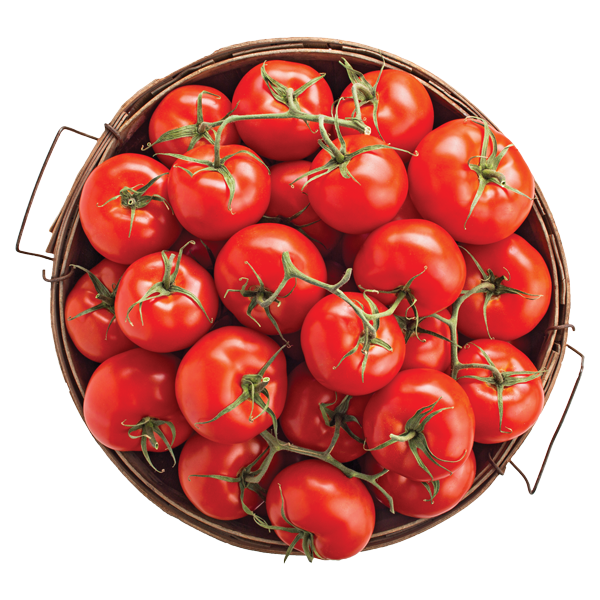 Tomato, To-mah-to, Learn the Different Types